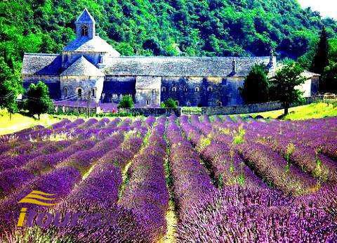 都说普罗旺斯的薰衣草最令人向往了,其实还令人陶醉的是在普罗旺