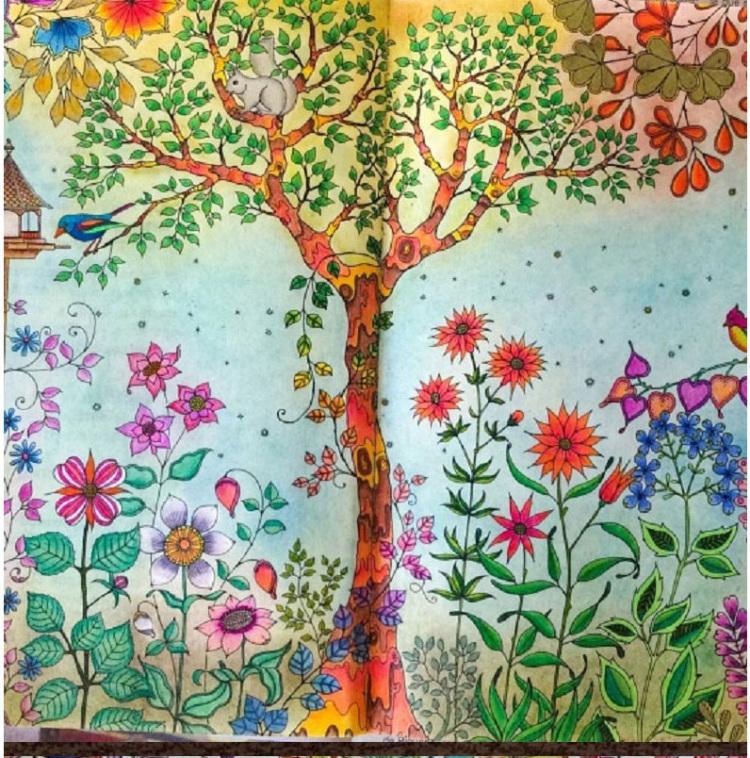 秘密花园 奇幻梦境